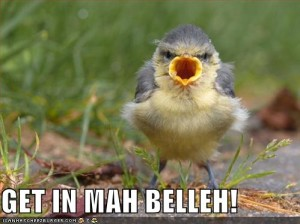 funny-pictures-bird-mouth-belly